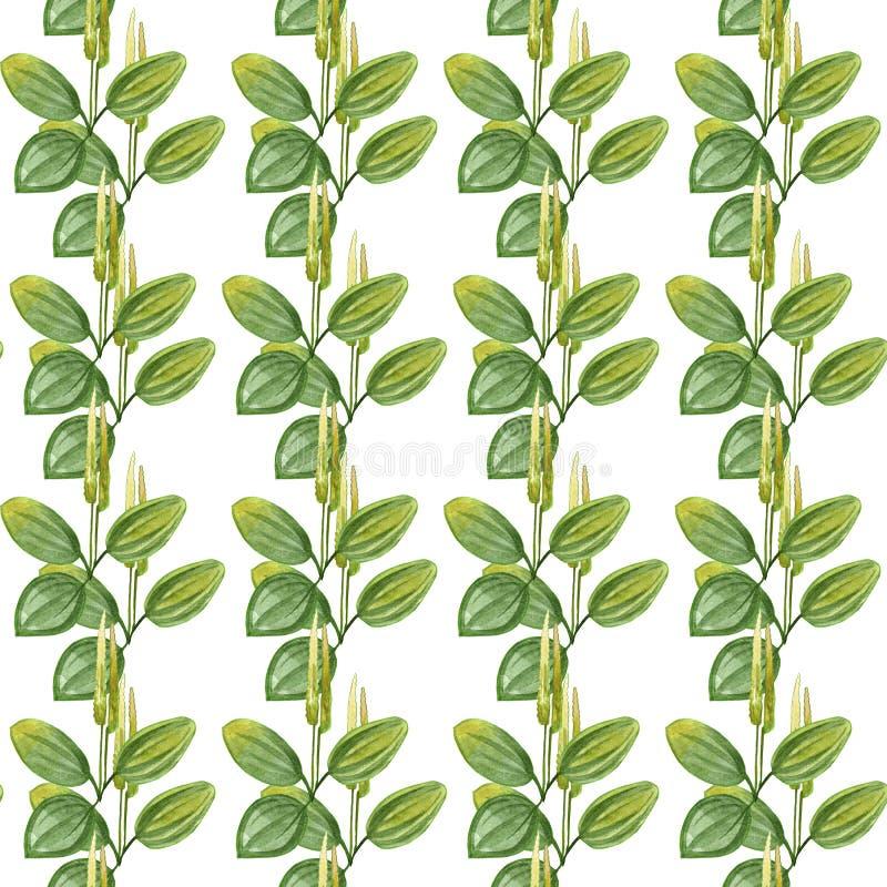 手拉的大蕉样式无缝的水彩图画与黄色在白色背景隔绝的花和绿色叶子的 向量例证