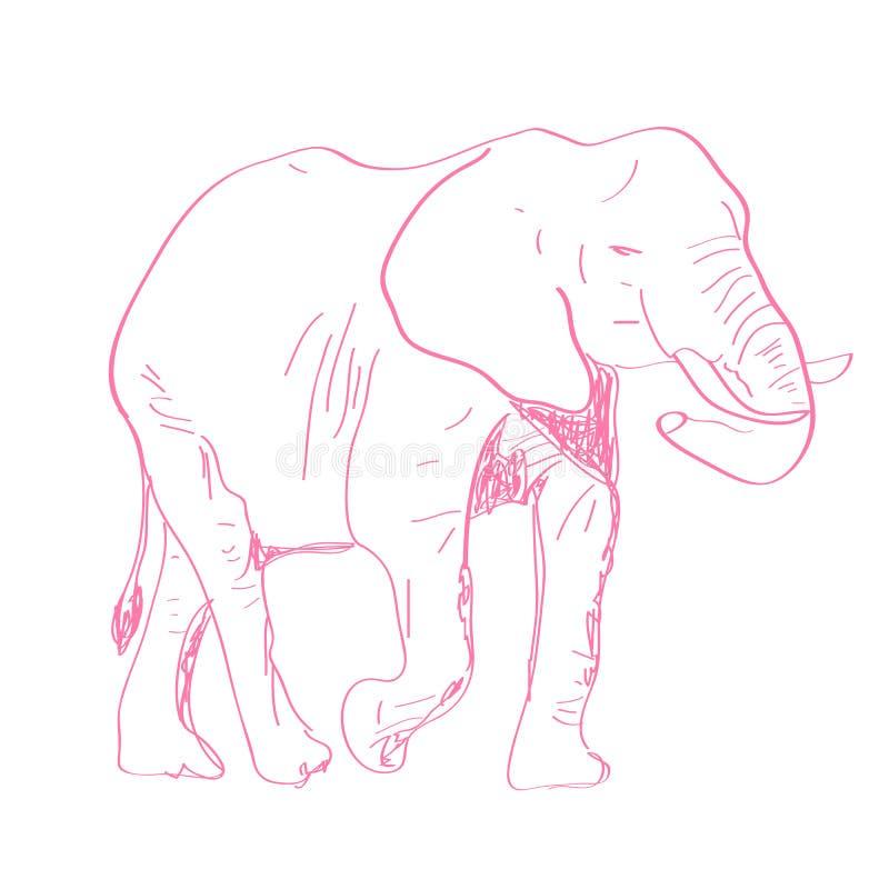 手拉的大象 库存照片