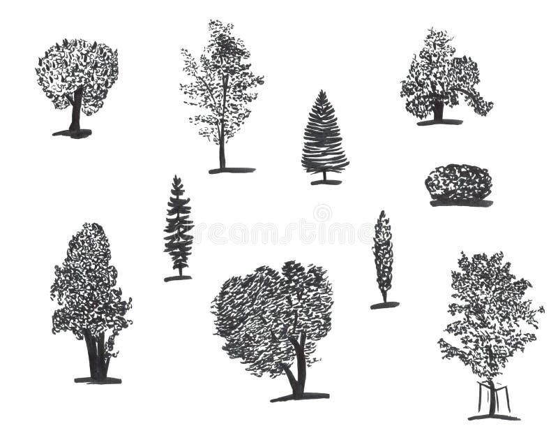 手拉的套墨水树 设置速写的例证 云杉贷方和刷子剪影卡片和包裹的 皇族释放例证