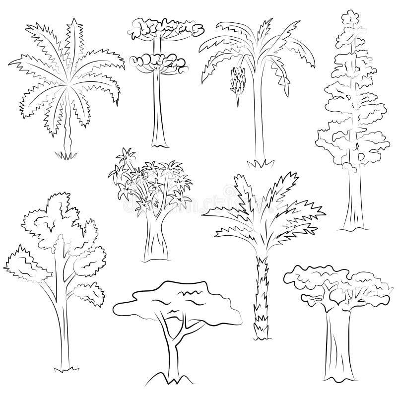 手拉的套树 棕榈,美国加州红杉,芦荟,金合欢,在剪影样式的木棉乱画图画  向量例证