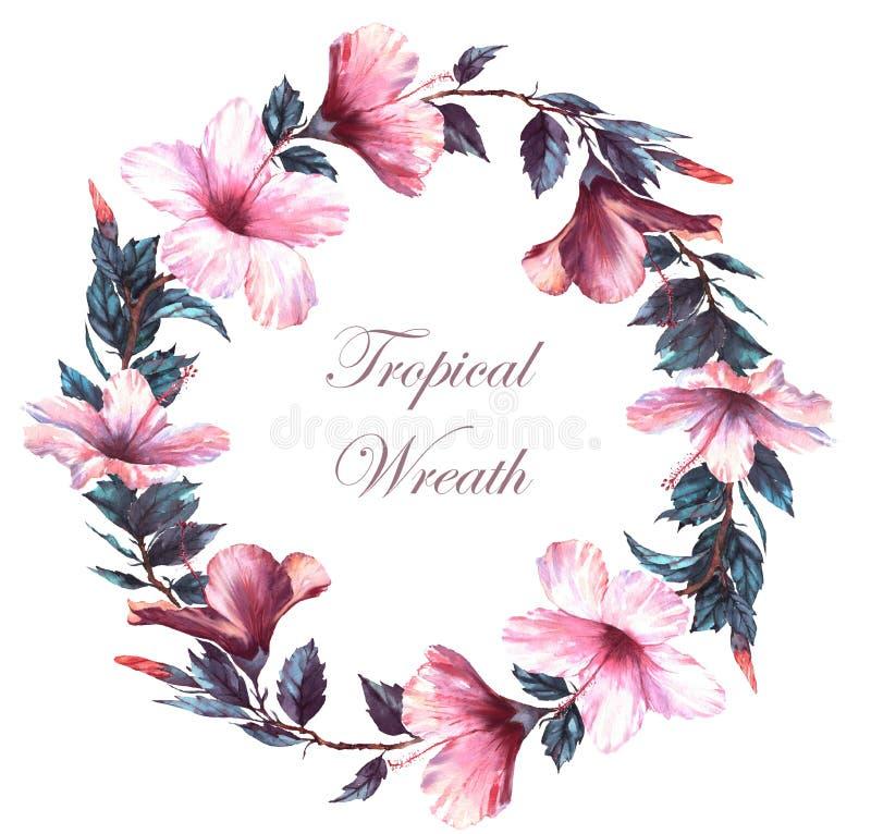 手拉的嫩花圈的水彩花卉例证与白色和桃红色木槿的开花 向量例证