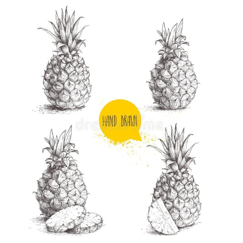 手拉的成熟菠萝的剪影样式集合例证 库存例证