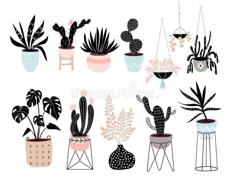 手拉的房子种植用不同的热带植物的汇集 向量例证
