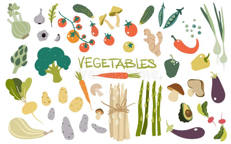 手拉的新鲜的可口菜 健康和鲜美素食主义者产品,健康素食食物包裹  向量例证