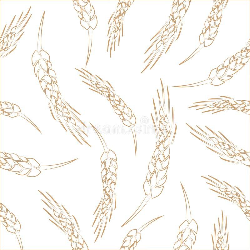 手拉的无缝的传染媒介麦子小尖峰背景 库存例证