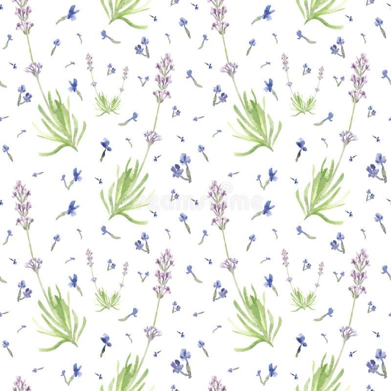 手拉的春天颜色淡紫色的水彩无缝的样式 逗人喜爱的国家领域花的例证 库存例证