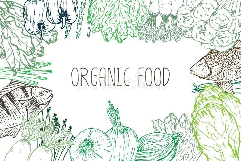 手拉的有机食品背景 有机草本、香料和海鲜 健康食品图画设置了菜单设计的元素 皇族释放例证