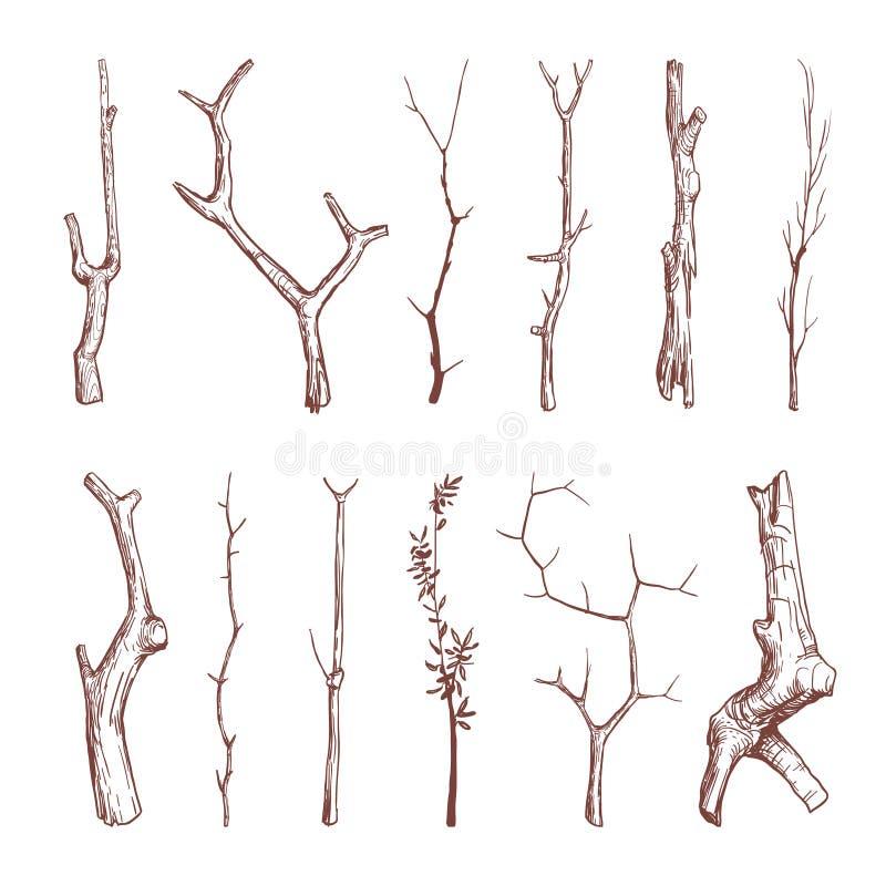 手拉的木枝杈,木棍子,树枝导航土气装饰元素 向量例证