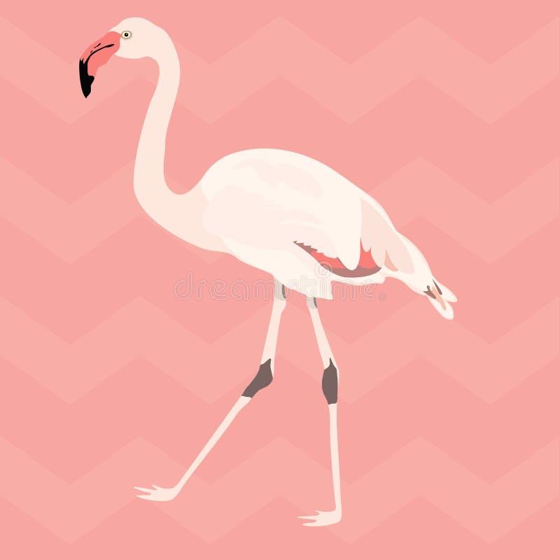 手拉的桃红色火鸟 无缝的模式 向量例证