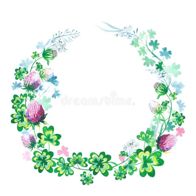 手拉的植物的与三叶草花、词根和叶子被隔绝的图象的水彩圆的框架 库存例证