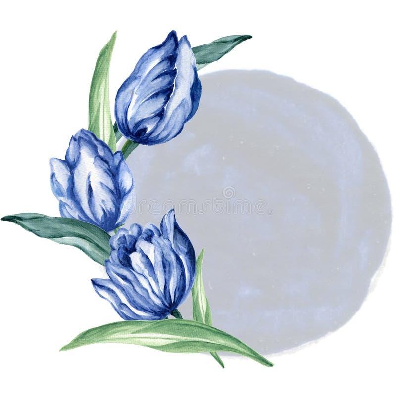 手拉的水彩例证郁金香靛蓝水军蓝色花束庭院花叶子叶子缠绕完善对邀请 免版税库存照片