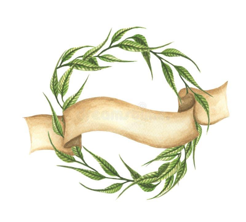 手拉的水彩例证 绿色叶子缠绕与丝带 皇族释放例证