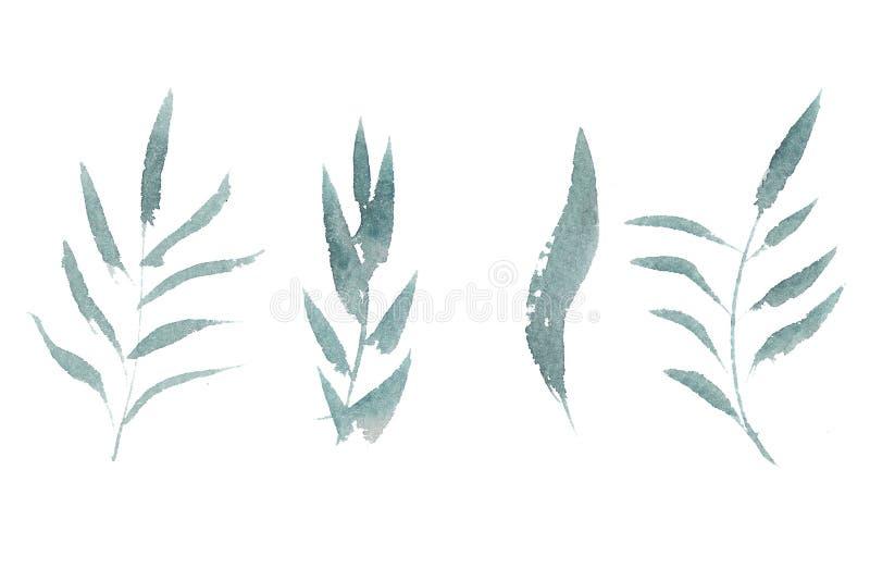 手拉的水彩套叶子 向量例证