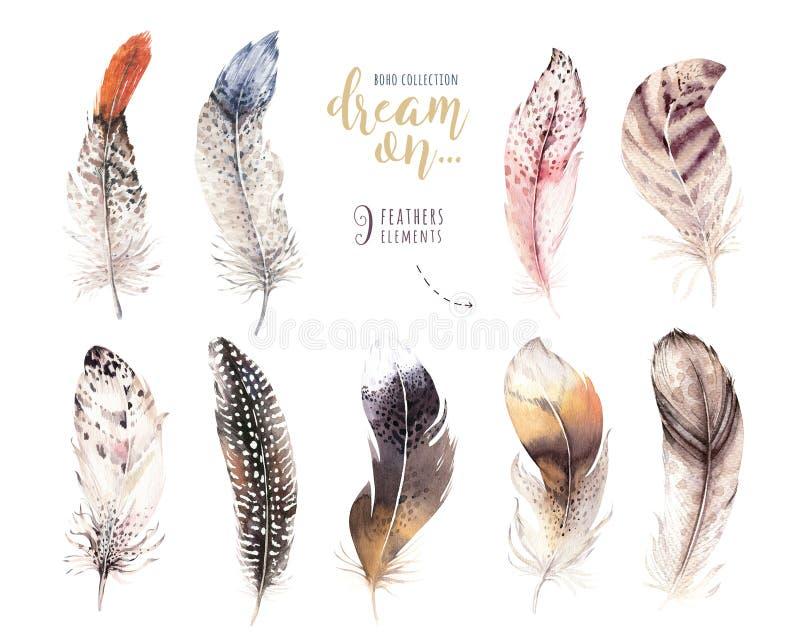 手拉的水彩绘画充满活力的羽毛集合 向量例证