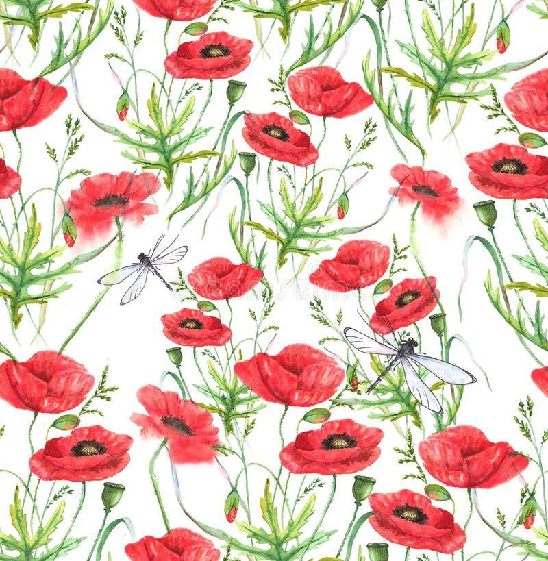 手拉的水彩花卉无缝的样式 夏天草甸开花-在白色背景的鸦片 库存例证