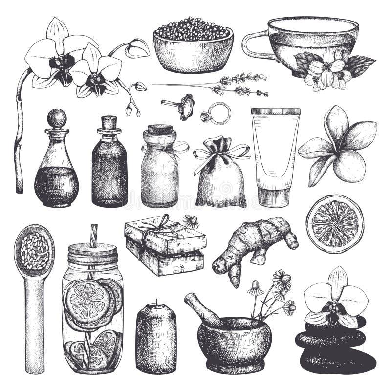 手拉的温泉和秀丽例证葡萄酒fset  化妆用品和芳香成份收藏 传染媒介健康生活eleme 库存例证