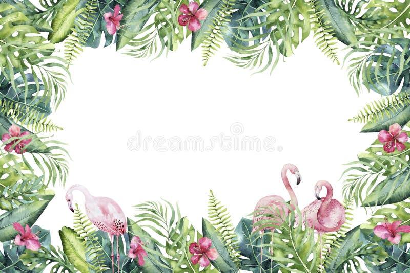手拉的火鸟水彩热带invirtation backgraund  异乎寻常的玫瑰色鸟例证,密林树,巴西 库存照片