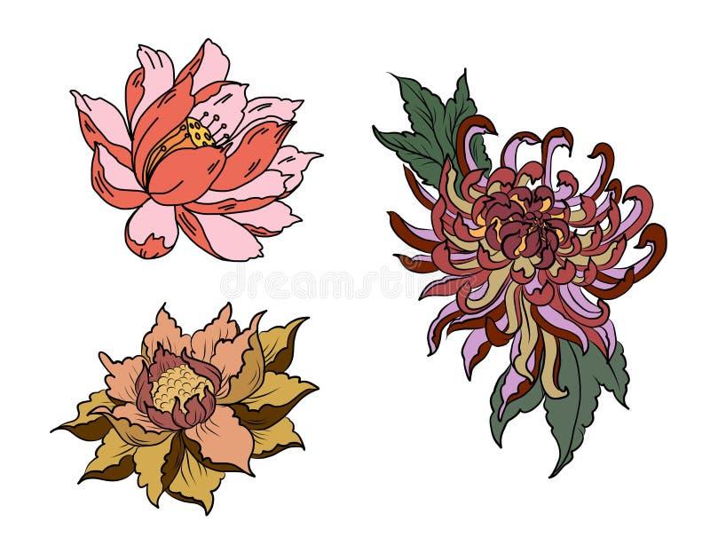 手拉的牡丹花、莲花和菊花开花中国式传染媒介艺术 中国纹身花刺设计桃红色牡丹花 向量例证