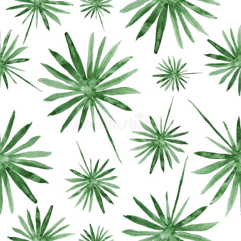手拉的绿色棕榈叶,热带水彩绘画-在白色的无缝的样式 皇族释放例证