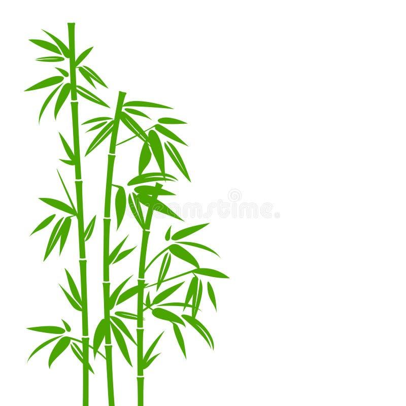 手拉的绿色竹植物背景 向量例证