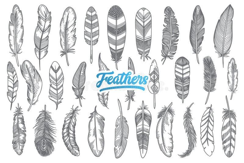 手拉的羽毛设置与蓝色字法 免版税库存图片