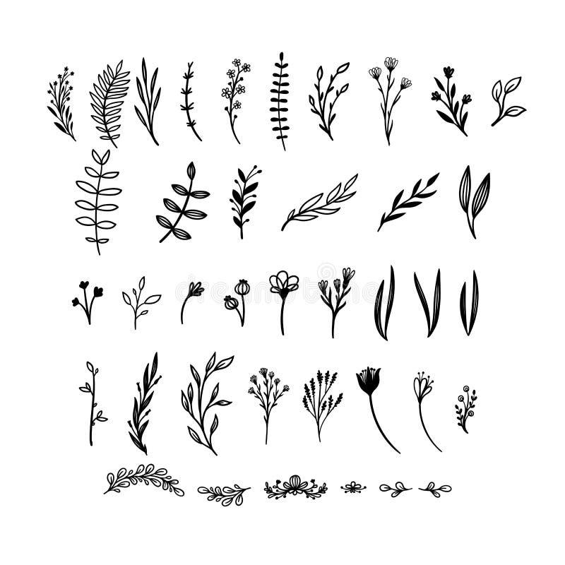 手拉的花卉传染媒介元素 自由通配 为邀请,贺卡,行情,博克,婚礼框架完善 库存例证