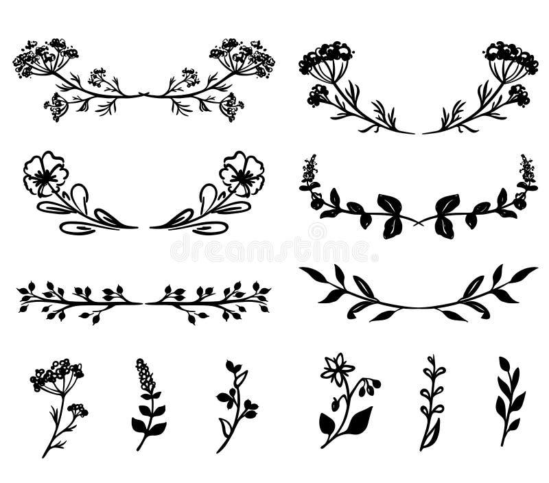 手拉的花卉设计元素、植物和花 免版税库存图片