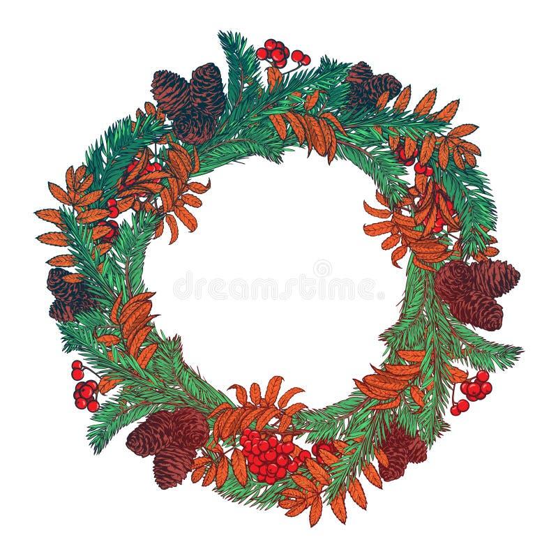 手拉的花圈用红色莓果和冷杉分支 圣诞卡冬天设计的圆的框架 传染媒介布局copyspace 向量例证