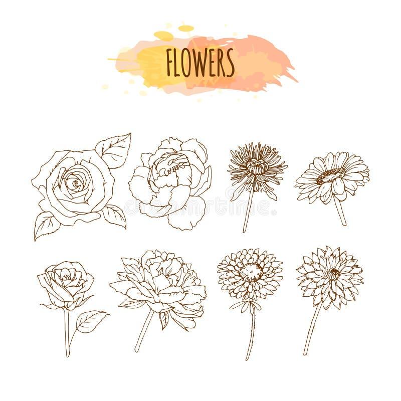 手拉的花集合 抽象花卉背景 向量例证