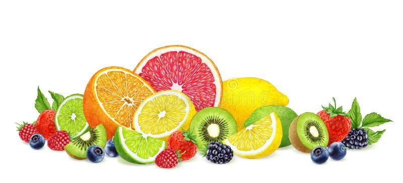 手拉的莓果和果子在白色背景 免版税库存图片