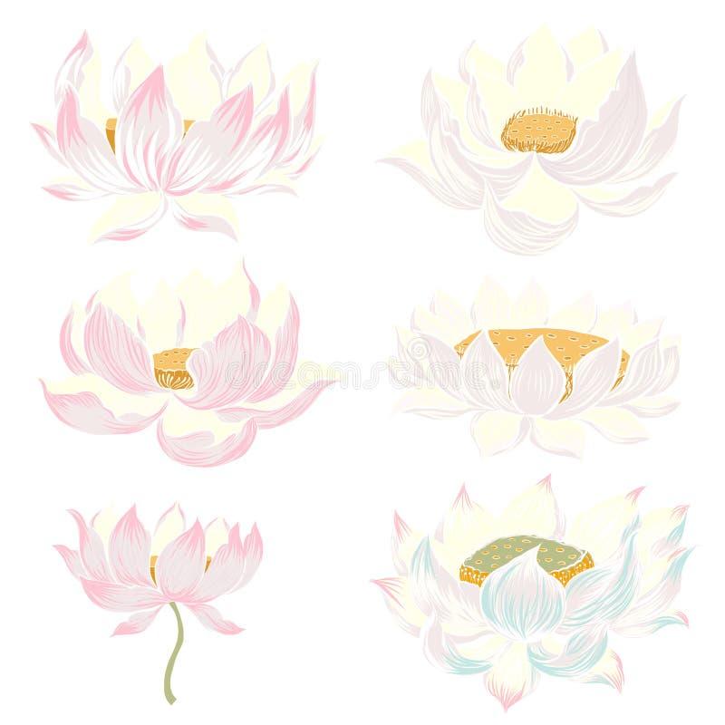 手拉的莲花孤立传染媒介集合和日本纹身花刺 库存例证