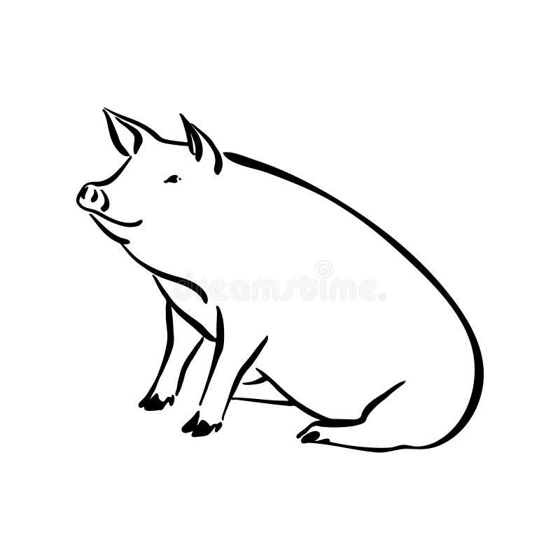 手拉的逗人喜爱的猪剪影例证 传染媒介贷方图画牲口,在白色隔绝的概述坐的宠物剪影 皇族释放例证