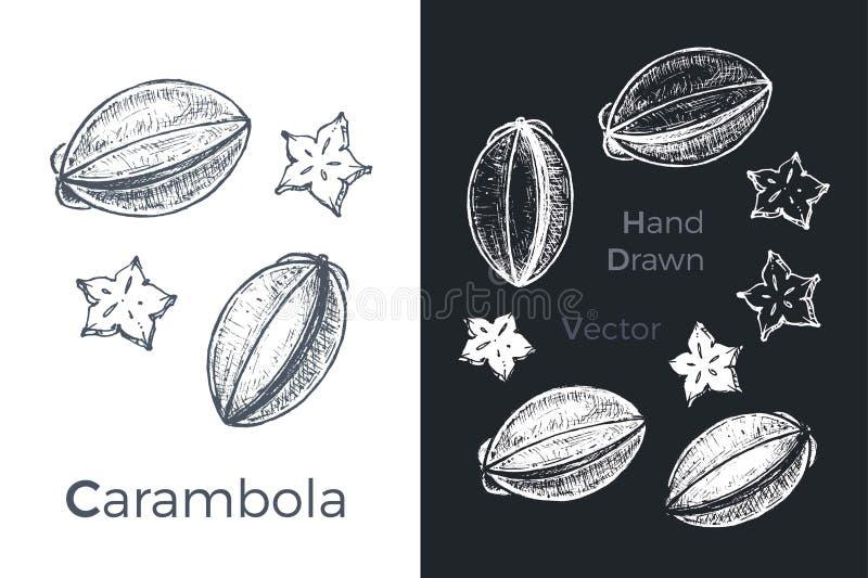 手拉的阳桃象在白色和黑白垩背景设置了被隔绝 果子剪影包装和菜单设计的 皇族释放例证