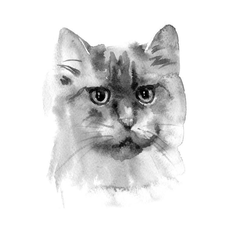 手拉的水彩波斯猫 明信片、礼物标记和其他打印的材料的理想 皇族释放例证