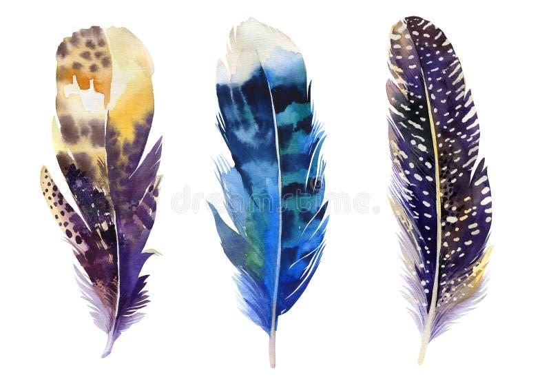 手拉的水彩羽毛集合 Boho样式 库存例证