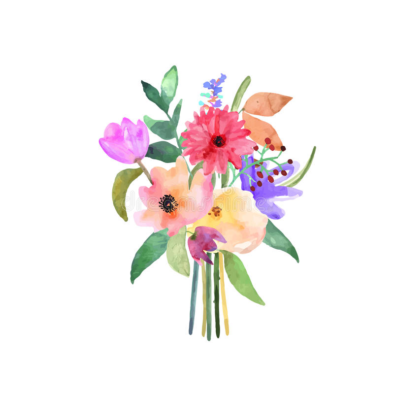 手拉的水彩花束 查出的要素 向量 向量例证