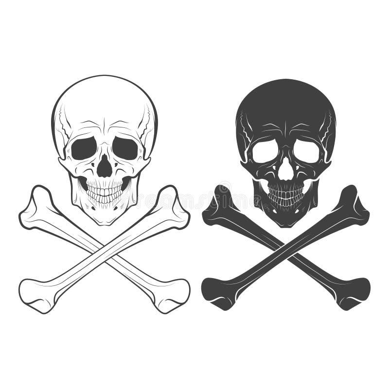 手拉的头骨和的骨头,传染媒介例证 向量例证