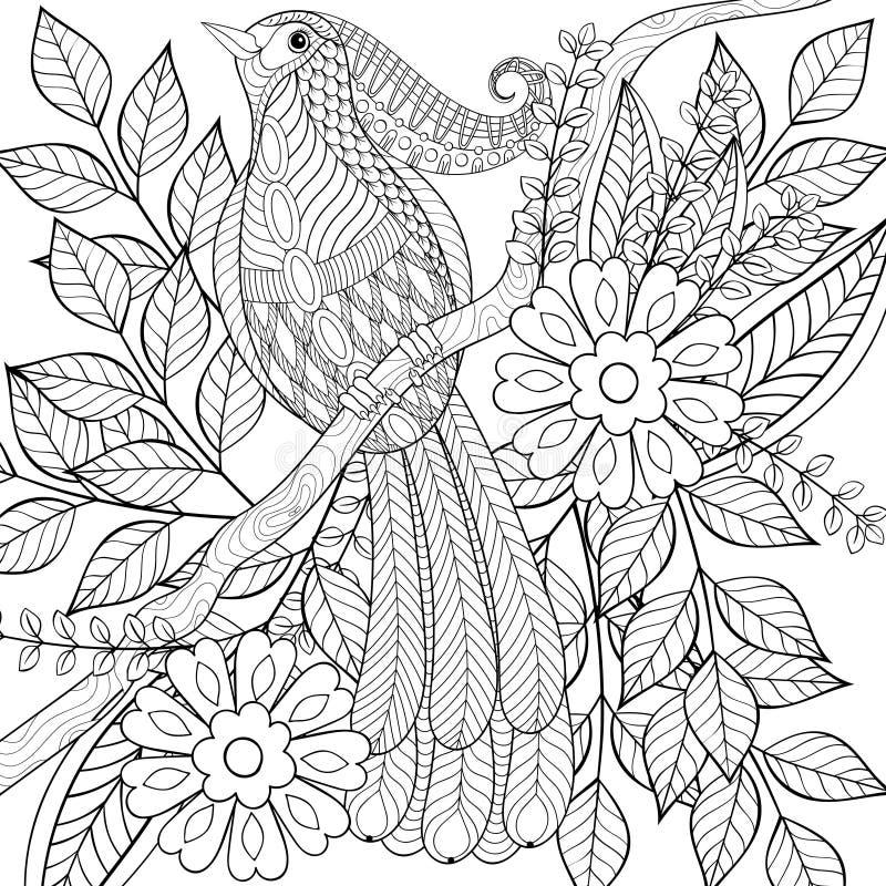 手拉的zentangle异乎寻常的热带鸟开会 库存例证