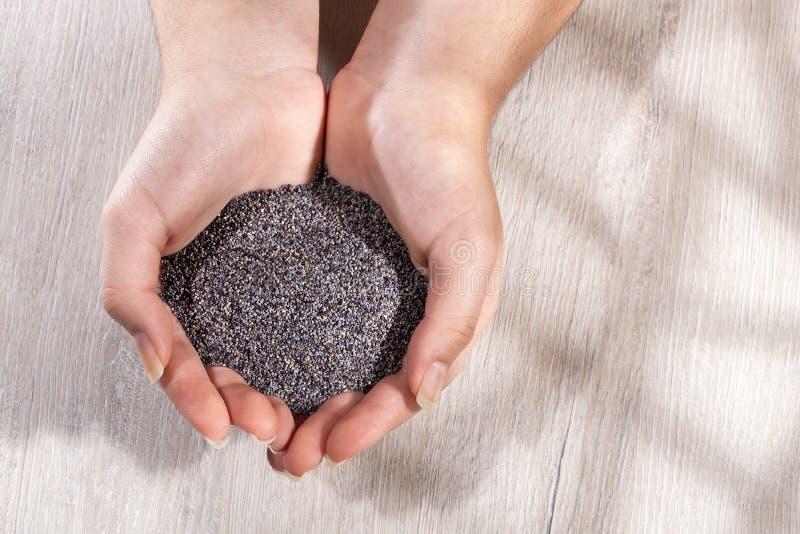 手持有机罂粟籽的手 — 罂粟 库存照片