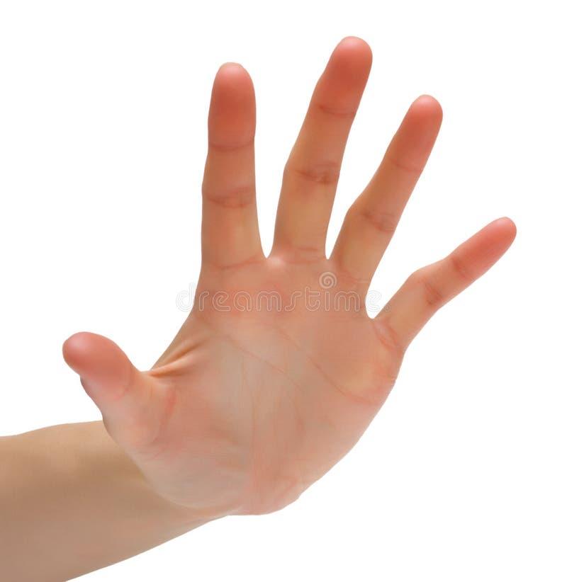 手指五 免版税库存图片