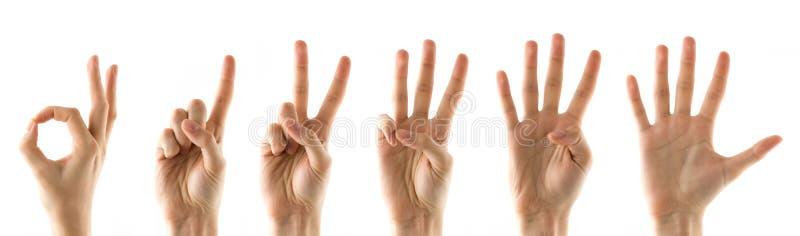 手指编号 库存图片