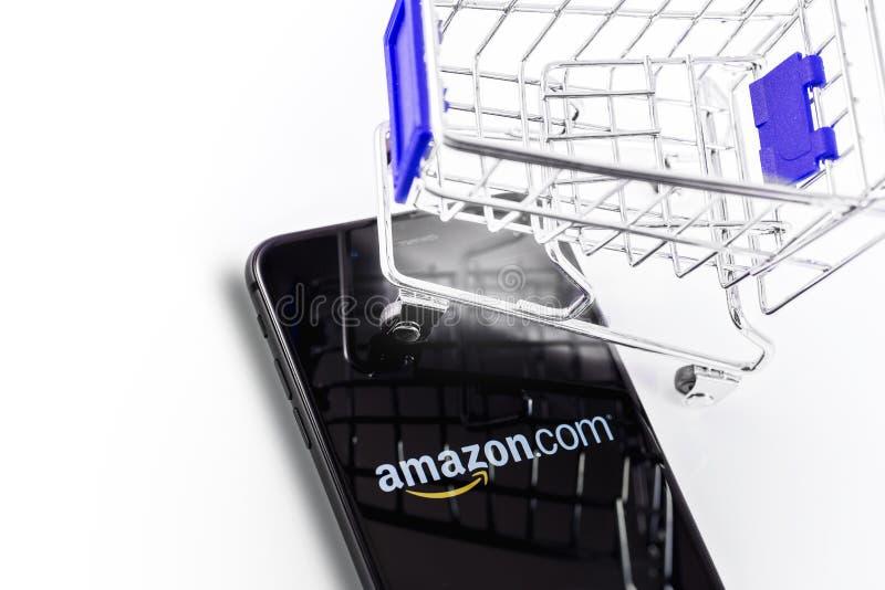 手推车和亚马逊商标 免版税库存照片