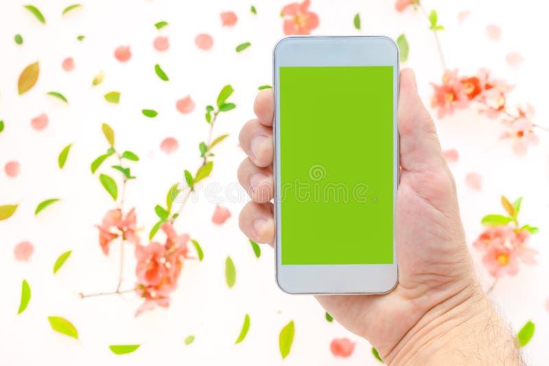 手机嘲笑在有春天装饰的男性手上 库存照片