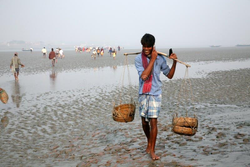 手机盖子和苏达班,印度的多数遥远的部分信号  库存照片