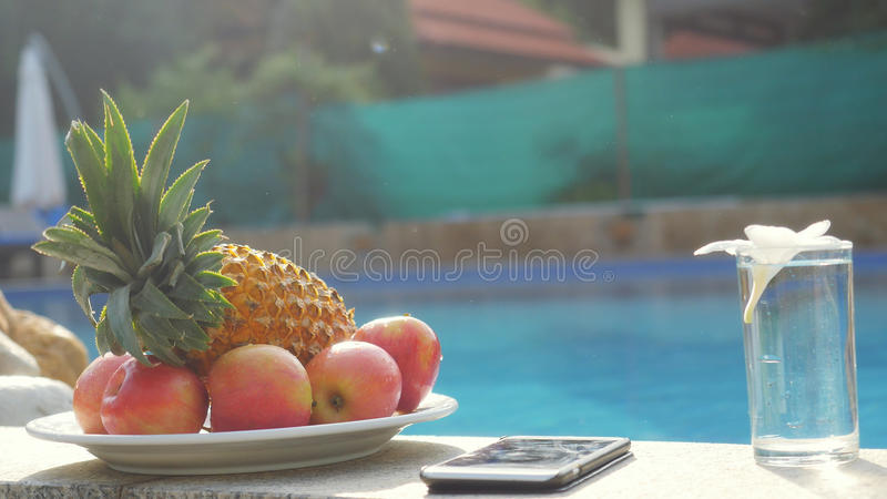 手机,板材用果子,杯与赤素馨花花的水由水池关闭 库存图片