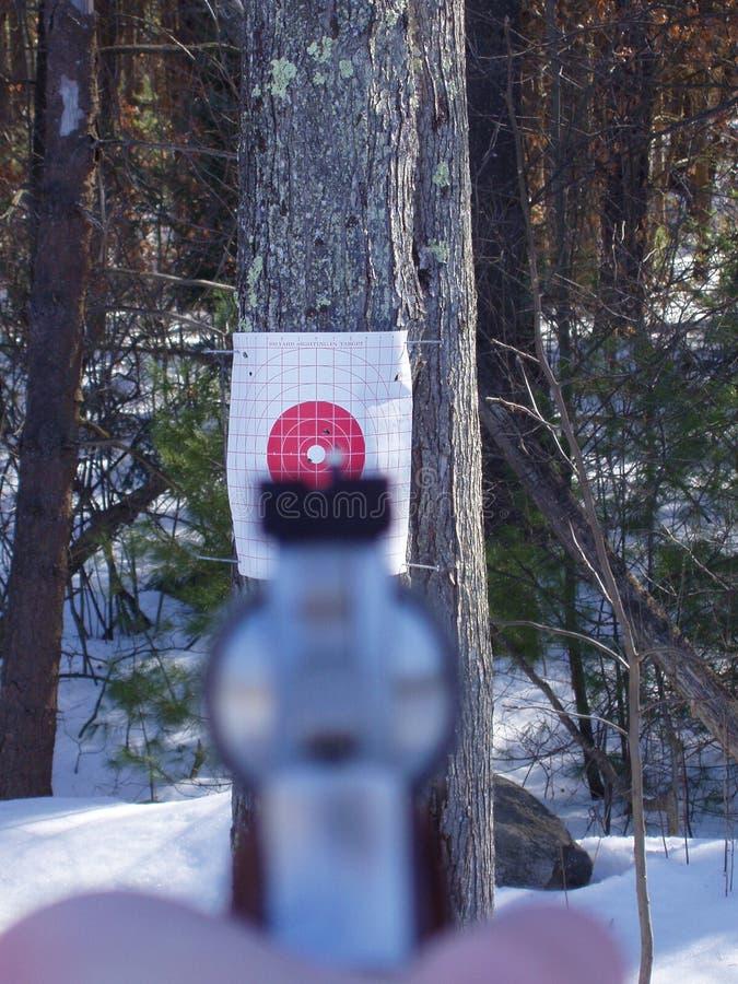 Download 手枪点状目标 库存照片. 图片 包括有 命中, 目标, 舷窗, 重点, 射击, 意图, 左轮手枪, 中心, 争取 - 63396