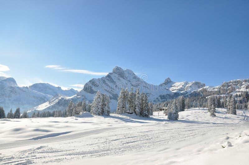 手段滑雪瑞士 库存照片