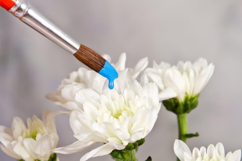 手油漆白花 库存照片