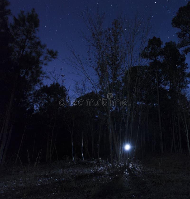 手电在繁星之夜 免版税库存图片