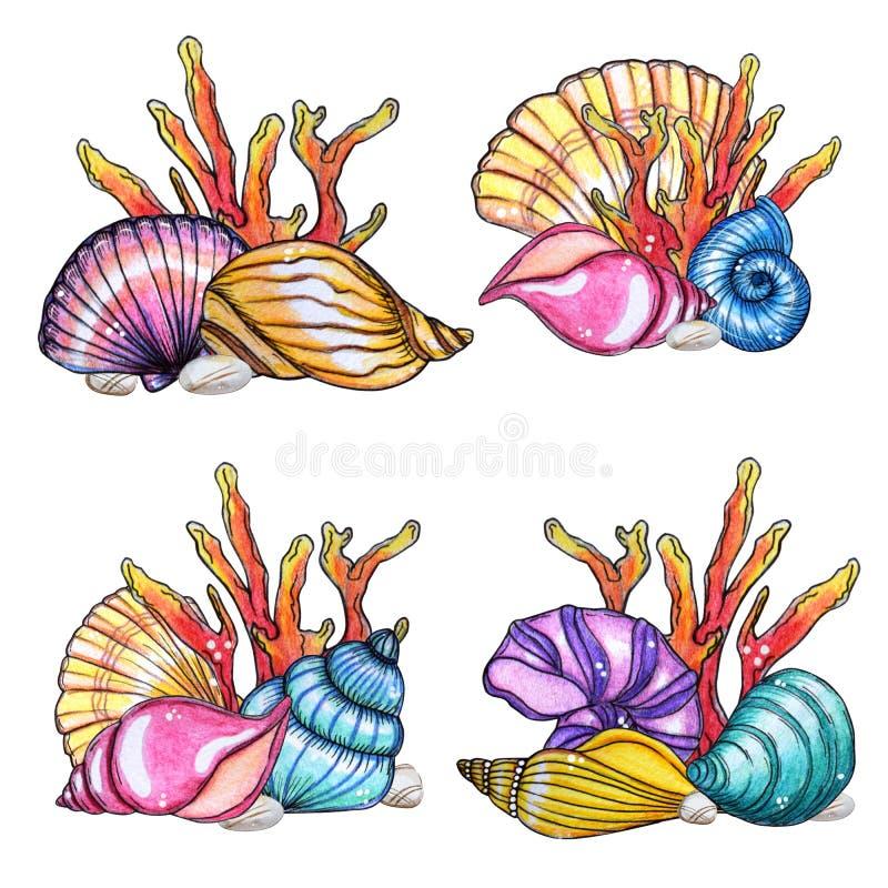 手画水彩套壳和珊瑚 向量例证